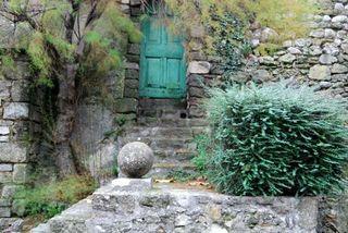 Provence garden shot